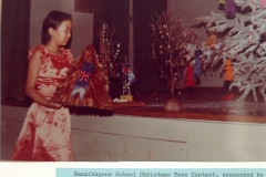 Nanaikapono Christmas