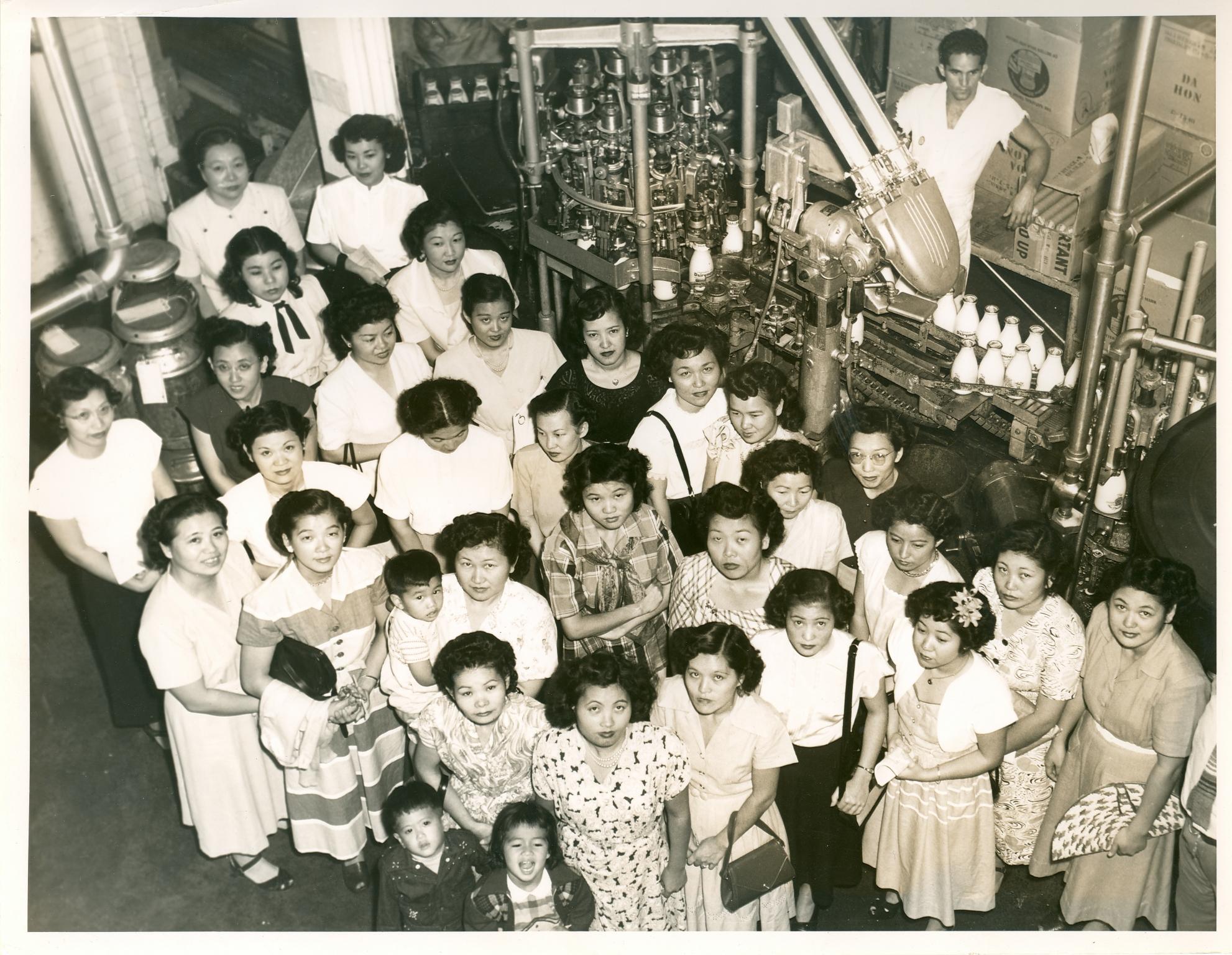 Milk Plant 1950